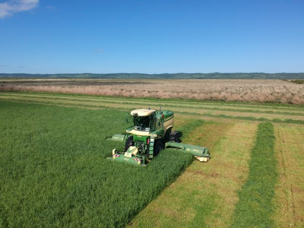 コントラ事業 1番牧草収穫作業スタート